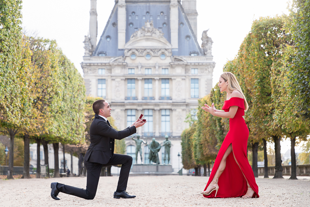 How to propose surprise proposal tips